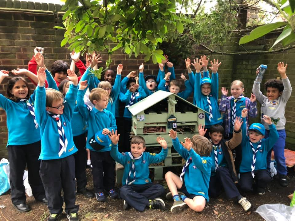 Beavers' Bug Hotel & Making Rafts – June 2019